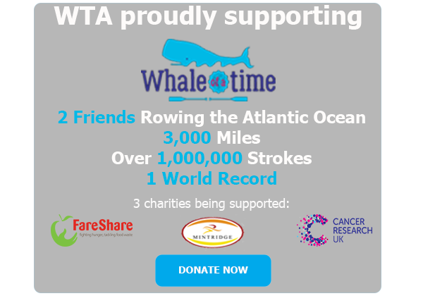 Whale of a time - Website